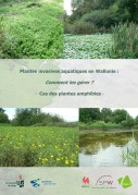 Couverture plantes invasives