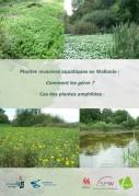 Couverture plantes invasives