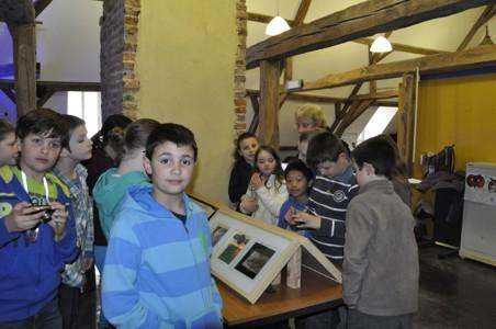 28/03/2013 - Ecole N - D Philippeville - expo PNVH - Chouettes et Hiboux