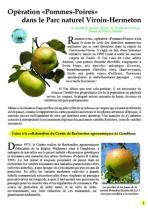 Opération Pommes