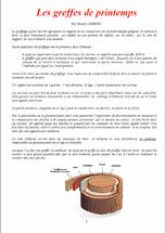 Les-greffes-de-printemp1