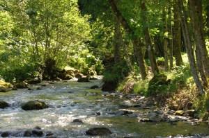 17 rivière