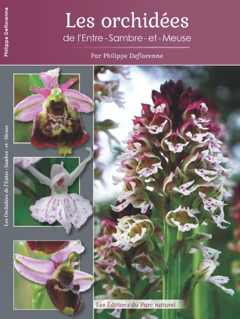 couverture-orchidees-web