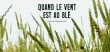 vent_ble_ban-0