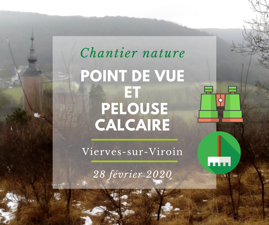 Chantier point de vue Vierves FB (3)