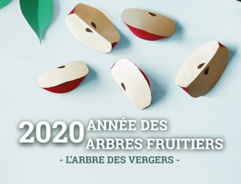 SDA 2020
